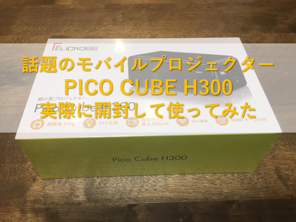 PICO CUBE H300 実際に使ってみた